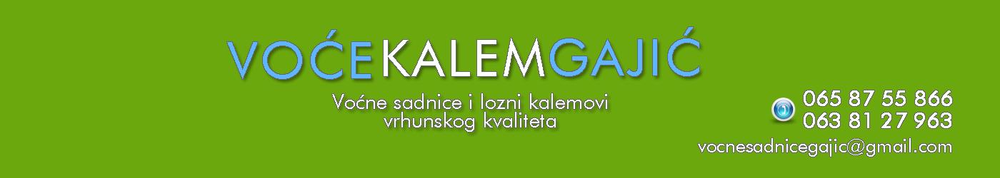 Sadnice Voća | Voće Kalem Gajić