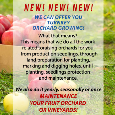 turnkey orchard growing